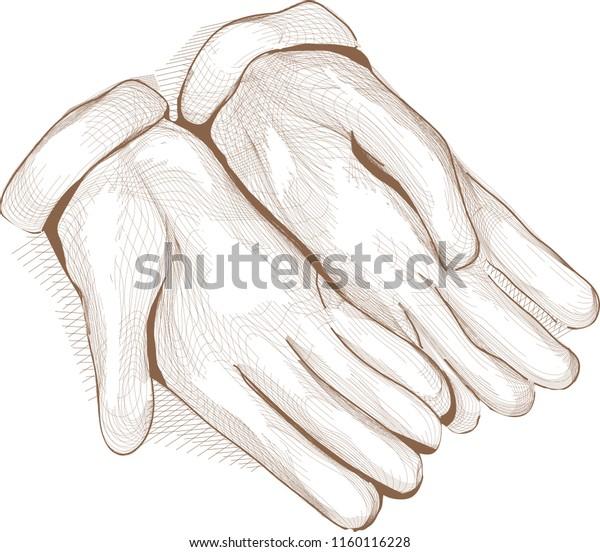Sketch Illustration Gardening Gloves Crosshatching Style