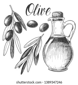 Sketch ink graphic olive oil and plant set illustration, draft silhouette drawing, black on white line art. Vintage etching food design.