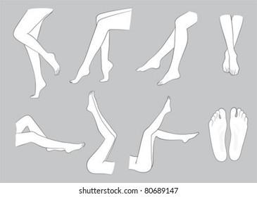 sketch of legs