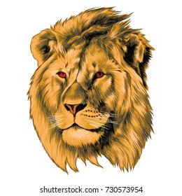 Lion Sketch Images Stock Photos Vectors Shutterstock
