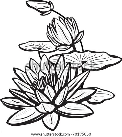 Sketch lotus flowers stock vector royalty free 78195058 shutterstock sketch of lotus flowers mightylinksfo