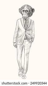 Sketch Monkey in suit. Businessman style. Hand drawn illustration.