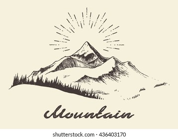 Sketch of a mountains with fir forest, engraving style, hand drawn vector illustration