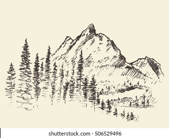 Sketch of a mountains with pine forest, engraving style, hand drawn vector illustration