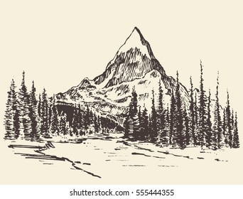 Sketch of mountains with pine forest and river, engraving style, hand drawn vector illustration