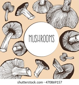 Sketch mushrooms set