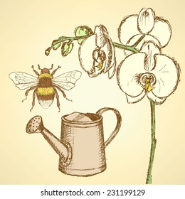 Sketch orchid, bee and watering can, vector background