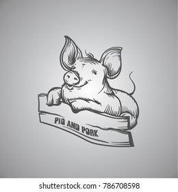 sketch of pig. engraved pig and pork.