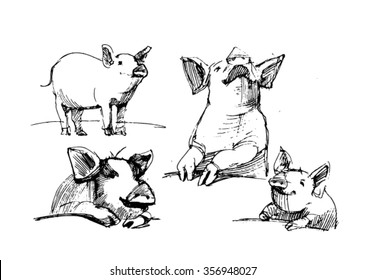 Sketch of pig. Pork. different poses pigs. pigs engraved image. Funny pig. a set of pigs. sketch ink pigs.