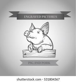 Sketch of pig. Pork.Engraved boar. Pork. different poses pigs. pigs engraved image. Funny pig.  sketch ink pigs.Ofort of pig. Logo or label with pig. Etching boar.