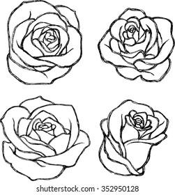 Sketch Rose Flower Set-Variations of hand drawn rose