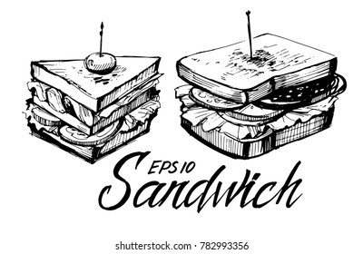 Sketch of sandwich. Hand drawn illustration converted to vector