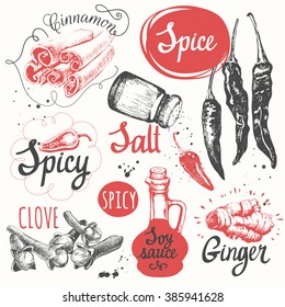 Sketch set with soy sauce, cloves, salt, pepper, cinnamon. Vector illustration with sketch spice. Funny labels of fresh seasonings and spices.