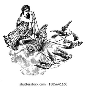A sketch showing goddess of love and beauty, Aphrodite, sitting on chariot which was driven by birds, vintage line drawing or engraving illustration.