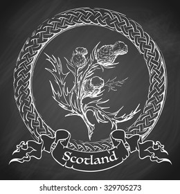 Sketch style Caledonian thistle in a Celtic decorative border. Sketch imitating chalk drawing on a blackboard. EPS10 vector illustration.