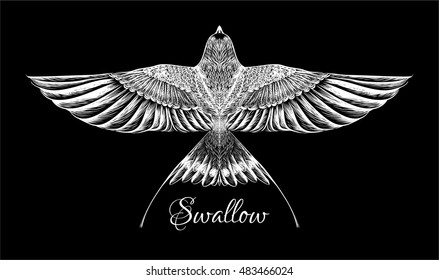 Sketch of swallow for tattoo art. Vector isolated illustration. Swift. Detailed hand drawn bird. Print for t-shirt.