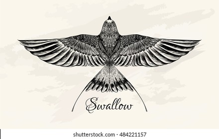 Sketch of swallow  for tattoo. Boho chic.Swift.