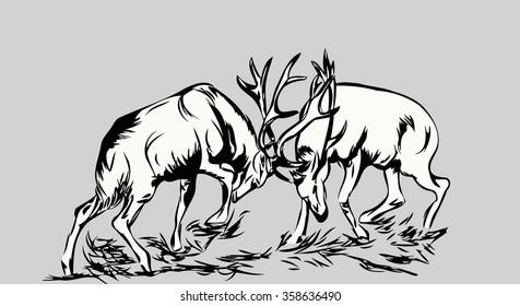 sketch two deer fighting