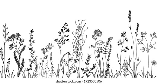 Sketch weeds, herbal, flowers and cereals. Trend elements design.