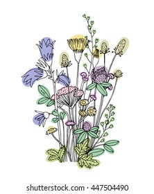 Sketch of the wildflowers on a white background.  Bluebell and clover. Hand drawn illustration.