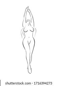 Sketch of woman body. Line art. Vector Illustration