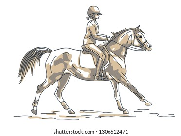Sketch of a young rider cantering on a sport pony.