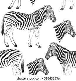 Sketch of a zebra. Hand drawn seamless pattern.