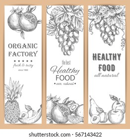 Sketched fruit banners. Pomegranate or garnet, healthy apricot and orange, grapes and banana, pineapple and kiwi, pear and apple. Vegetarian dessert menu, agriculture and juice theme.