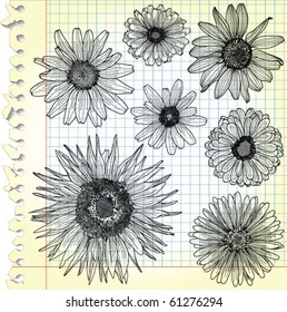 Sketches of blooms on squared paper - vector