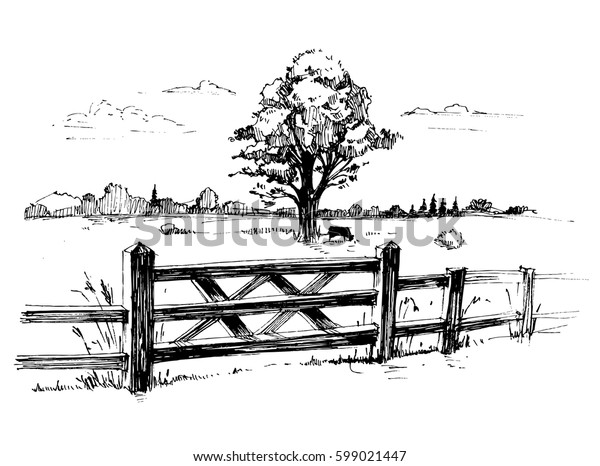 Sketches of countryside with a large tree and a wooden fence. Hand drawn illustration converted to vector.