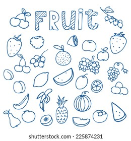 sketches of fruits vector on white background