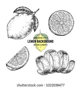 Sketches of lemon or lime. Hand drawn vector illustration lemon in engraving style. Citrus illustration elements. Isolated on white background. Lemon illustration print for packaging, pattern, label.