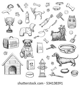 Sketches on a white background dog products and accessories for dogs.  Hand drawn
