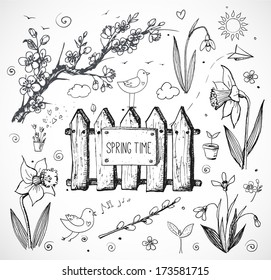 Sketches of spring objects: daffodils, crocus, pussy willow, snowdrops, birds isolated on white. Vector illustration.