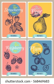 Sketchy fruit poster or card collection. Engraving retro style illustration. Vector illustration
