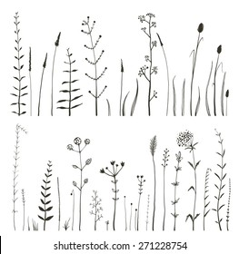 Sketchy Wild Field Flowers and Grass on White Monochrome Collection. Rustic colorful meadow growth illustration set. Vector EPS10.