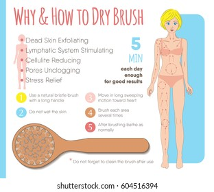 Skin dry brushing infographic. Massage line directions, why and how to dry brush. Benefits of the body skin exfoliation. Instruction layout for health, beauty, spa business and media.Vector illustration.