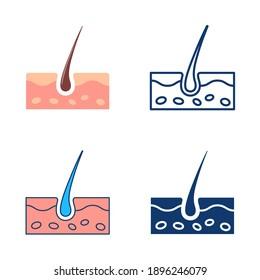 Das Skin-Symbol wird flach und in Linienstil gesetzt. Anatomie der menschlichen Haut und der Haare. Vektorgrafik.