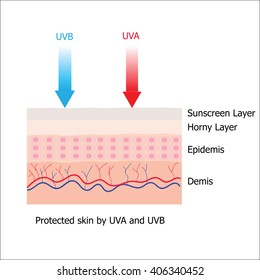 Skin with Sunblock from sunscreen lotion which protect human skin from UVA and UVB