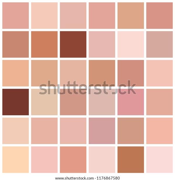 Skin Tone Color Chart Human Skin Stock Vector (Royalty Free) 1176867580