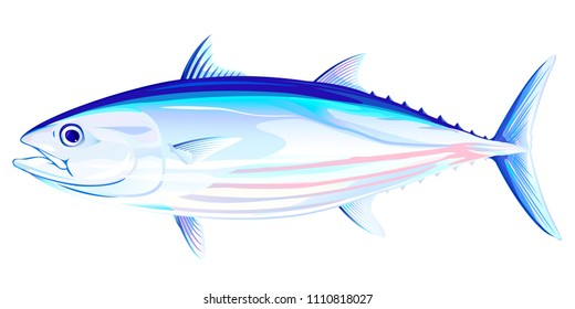 Skipjack Tuna Fish