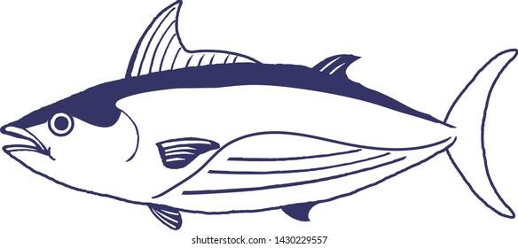 Skipjack tuna vector illustration on white background.
