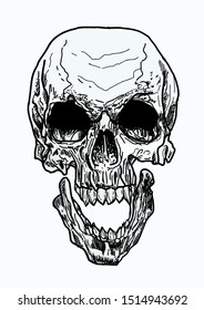 Skull with bones black and white brutal with flowers, drawn manually with the help of ink and pens vector