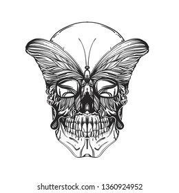 Skull with butterfly in linear style on a white background.