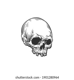 The skull. Can be used as a sketch of a tattoo.