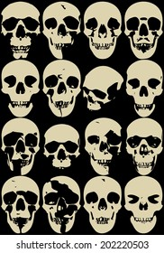 Skull collection dead body halloween
