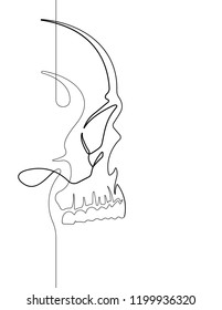 Skull Continuous Vector Line Art