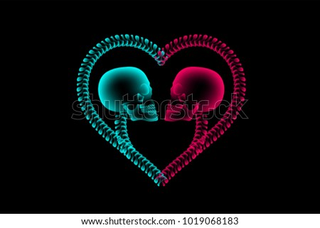 Skull Couple Xray Heart Frame Symbol Stock Vector Royalty Free