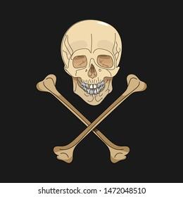 Skull with crossbones on a black background. Vector illustration