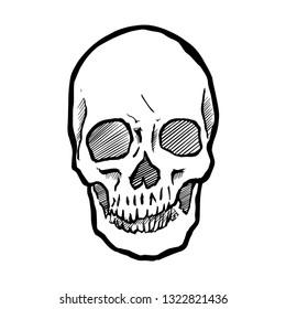 Skull Doodle vector.
